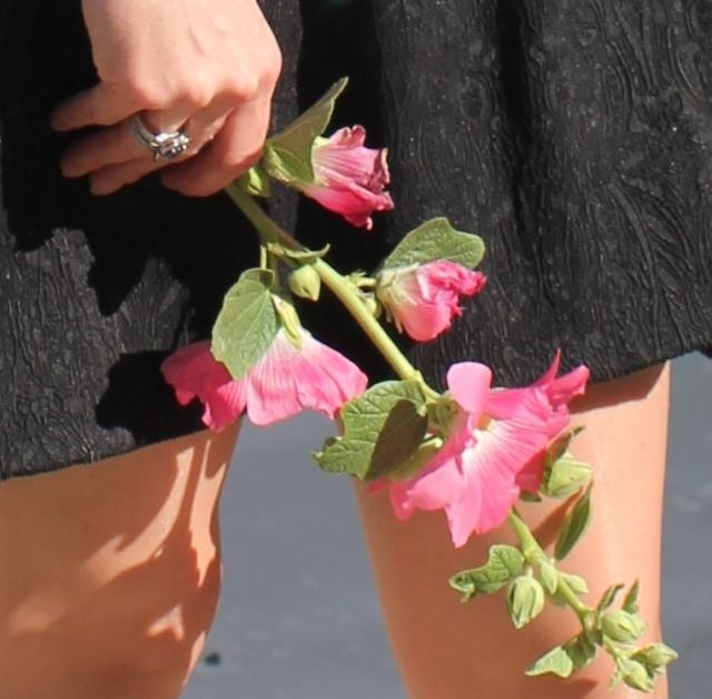 Ma petite robe noire  (13)