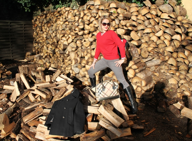 Allons couper du bois (23)