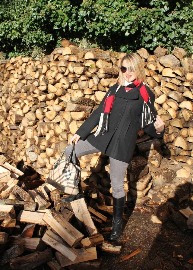 Allons couper du bois (6)