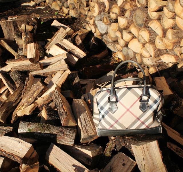 Allons couper du bois (7)