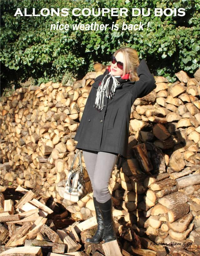 Allons couper du bois TITLE