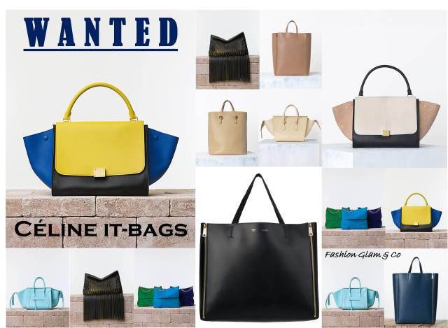 Wanted Céline it bags TITLE