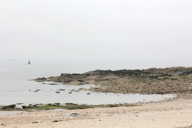 Promenade de l'Océan (80)