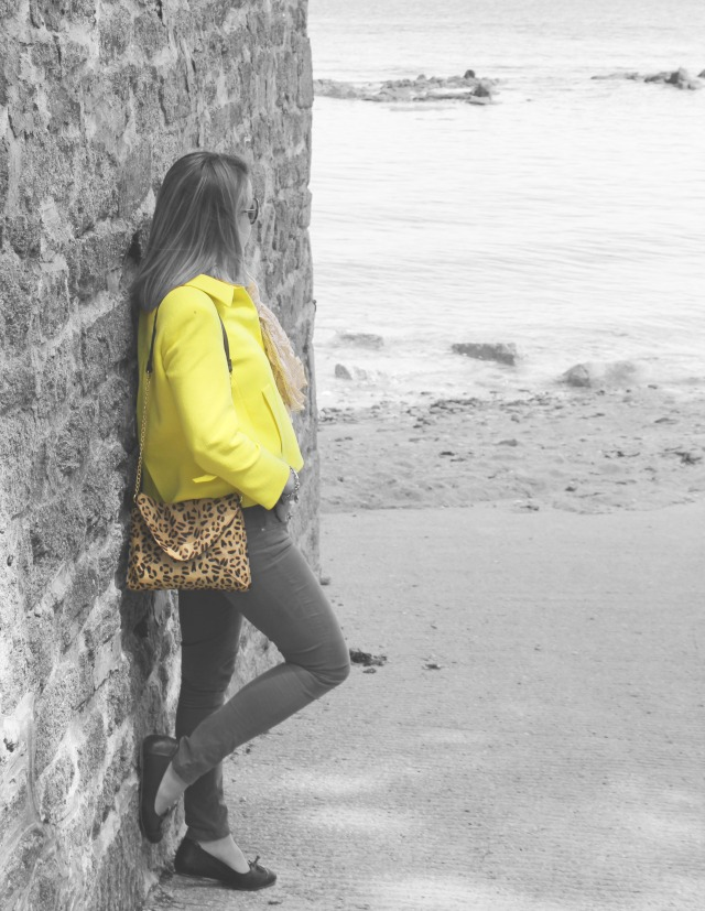 Yellow jacket & Graou clutch (3b)